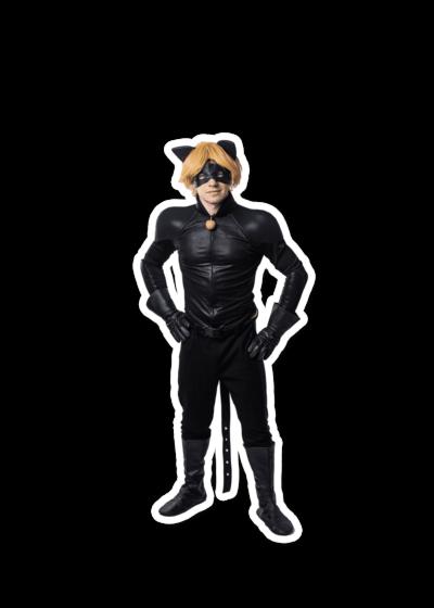 Организация праздников для детей - костюм 3